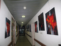 The 4 Marronniers Art Gallery
