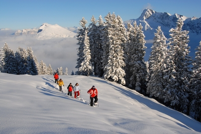 Goldiger Winter auf der Klewenalp