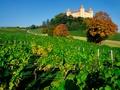 Château de Champvent © Claude Jaccard / www.vaud-photos.ch