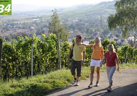 Wandern im Schaffhauserland