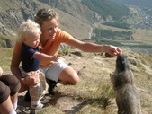 Observing and feeding marmots - Saas-Fee