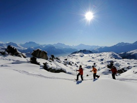 Congresses and seminars Riederalp Snowshoes outing