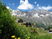 culinary activity discover life of the alp in Saas-Fee