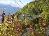The vineyard of Farinet & the Passerelle - Saillon