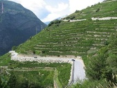Valaisan Wine - The highest vineyard in Europe - Visperterminen