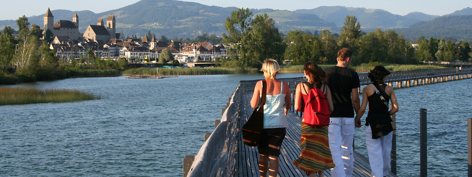 Discover culinary hikes in the Zürich region