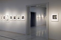 Galerien (Galerie Fischer)