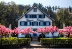 Funkes Obstgarten, Freienbach