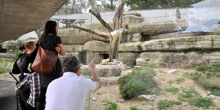 Jardin zoologique d hlh lzli bern tourismus for Le jardin zoologique