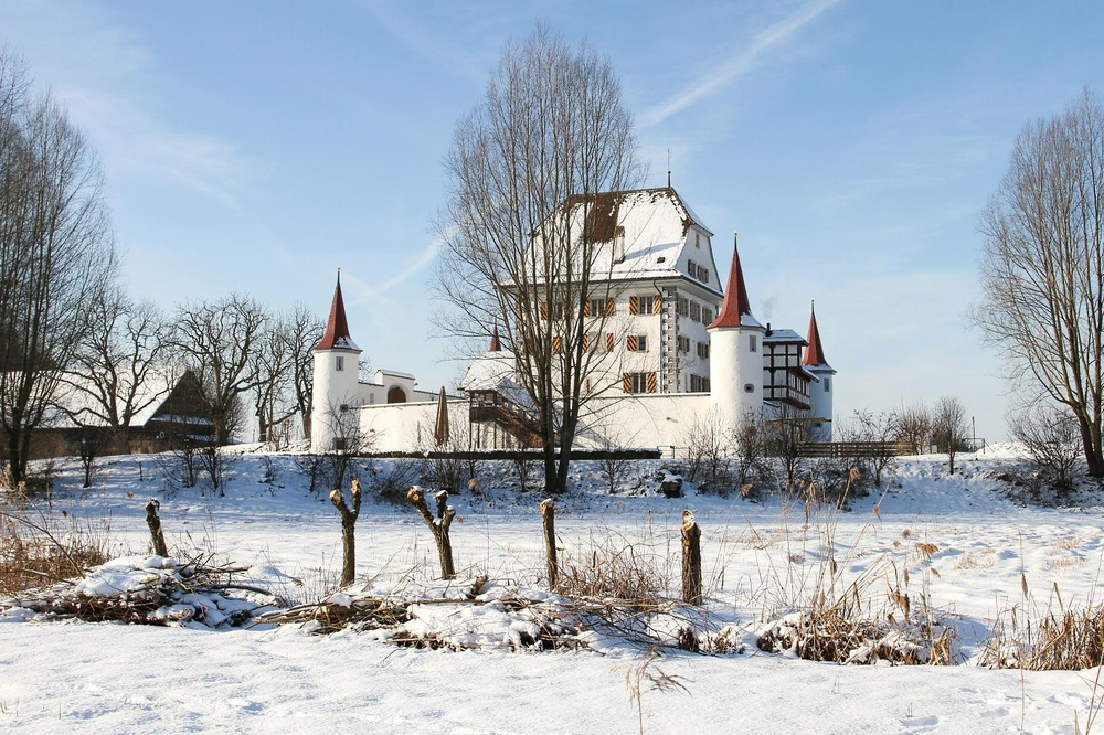 Schloss Wyher im Winter