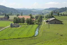 Agrovision Alberswil