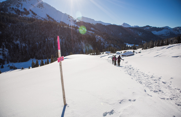 Pure air and powder snow