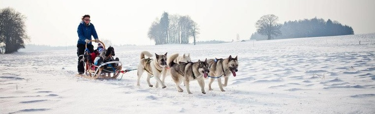 A journey to the huskies' land