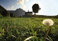 Charmey © Suisse Tourisme