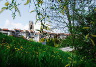 Fribourg © Thierry Pradervand