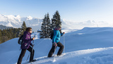 Guided snowshoes hikes this winter in La Gruyère