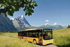 Gletscher Rundfahrt - Grosse Scheidegg