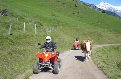 Quad Touren Berner Oberland