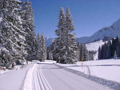 Cross-country skiing - Lombachalp