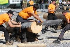 Brienz Lumberjack Festival