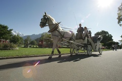 Interlaken - Carriage rides