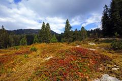 Habkern - Moorlandschaft