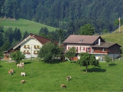 Ferienhof Rossweid Familie Bächtold Menzberg