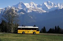 Bus - Transfer