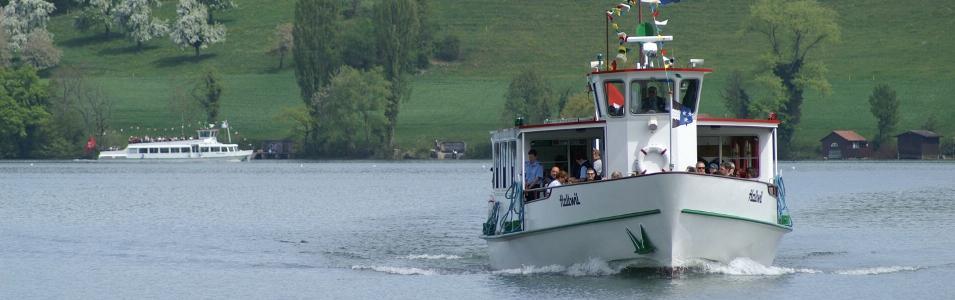Schifffahrt Hallwilersee