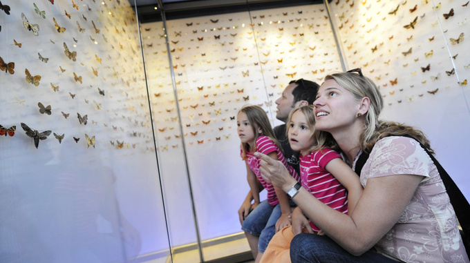 Family at Liechtenstein national museum