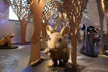 Naturmuseum Winterthur - Familienausflug
