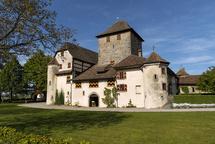 Schloss Hegi - Museum - Planzschulgarten - Schenke