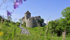Das Schloss Vaduz