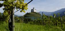 Gutenburg Castle in the Oberland