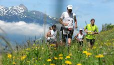 LGT Alpine Marathon