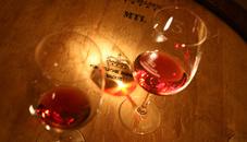 Gastronomie & Wein