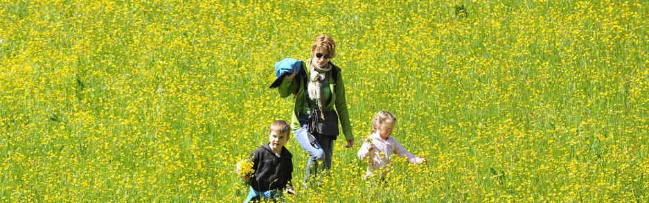 Familie, Blumenwiese