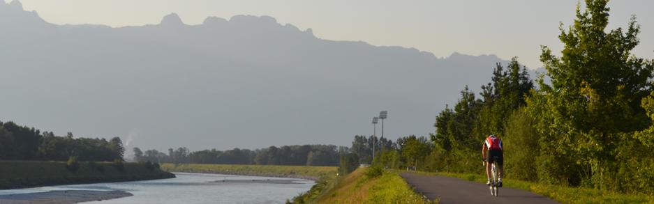 Radfahrer am Rheindamm
