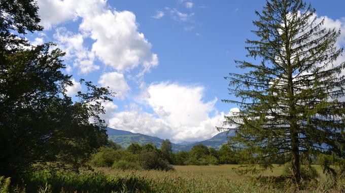 Naturschutzgebiet Schwabbrünn
