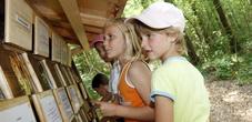 Kinder entdecken spielerisch den Wald