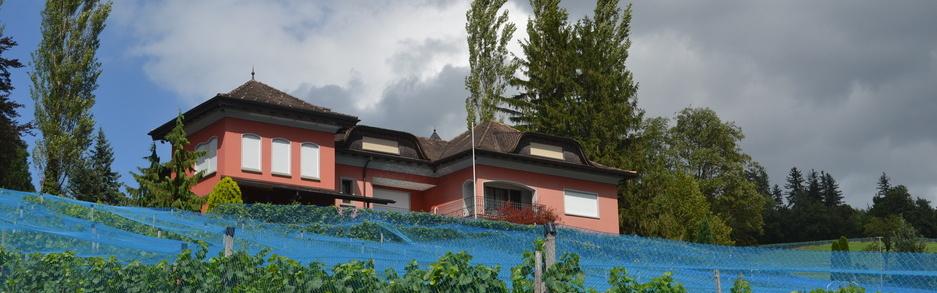 Weingut Castellum Eschen