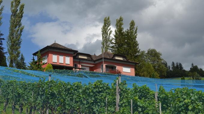 Winery Castellum Eschen