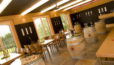Harry Zech Vineyard CANTINA