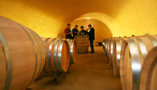 The Prince of Liechtenstein Winery
