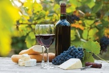 Winterthurer Weingeschichten