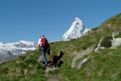 Hiker with dog in Zermatt