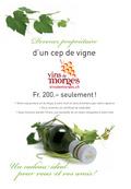 © Vins de Morges
