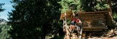 Zwäärg Baartli Trail