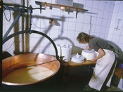 Production de fromages dans la fromagerie d'alpage