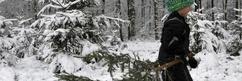 Märchenhaftes Braunwald